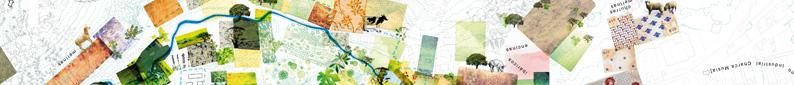 paisea 027 representation 2