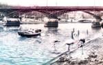Paris river