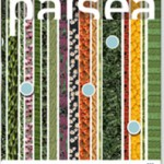 paisea 025 la cubierta vegetal