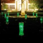 Injertos Lumínicos verdes
