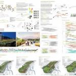 FINALISTA – Pista Viva, Revelación del paisaje de La Carlota