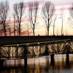 Undulating-Bridge,-02