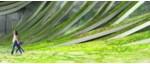 bosque carbonifero