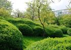 plots12_preis1_garden-labyrinth-5-kl